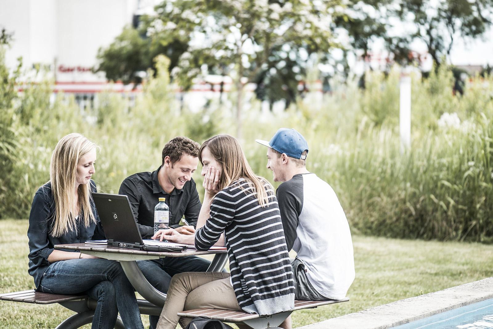 Vier FH Studenten sitzen im Freien auf einer Bank und lernen gemeinsam