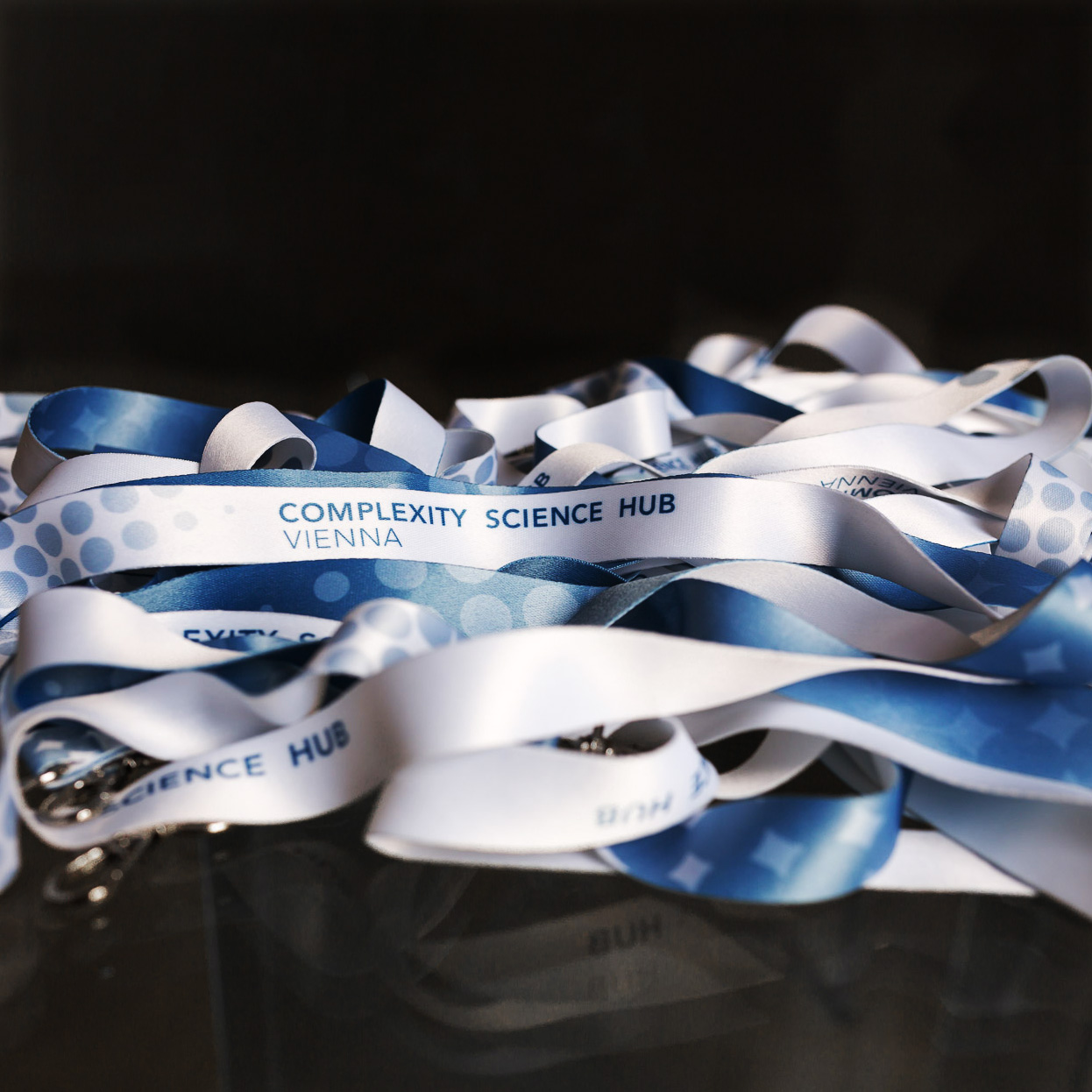 Complexity Science Hub Schlüsselband Giveaway in Blau-Weiß