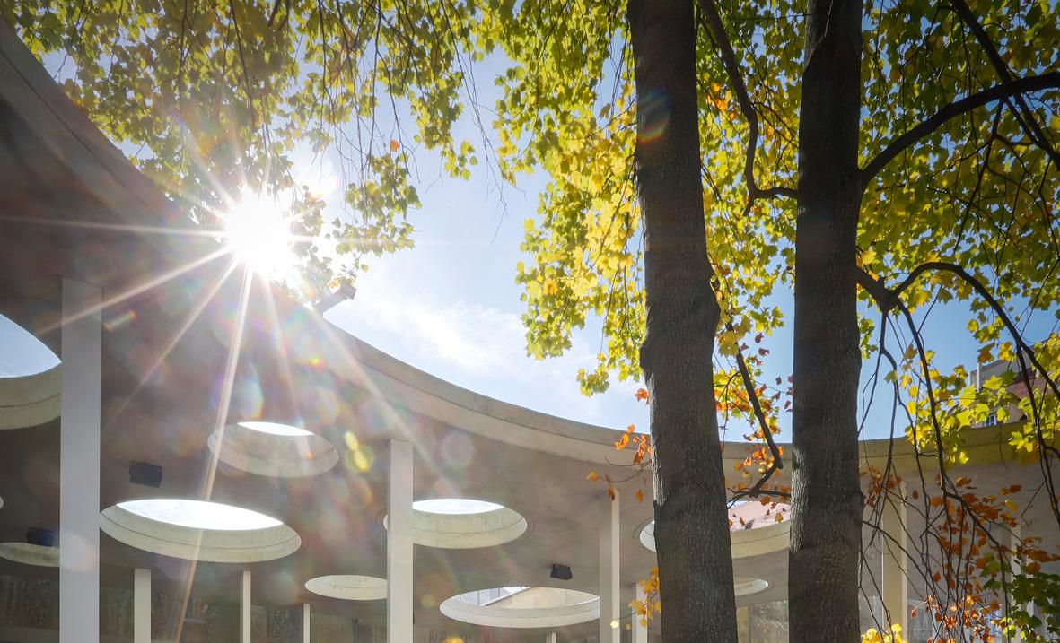 TU Graz Gebäude Detailansicht Lunghammer mit Bäumen im Sonnenschein