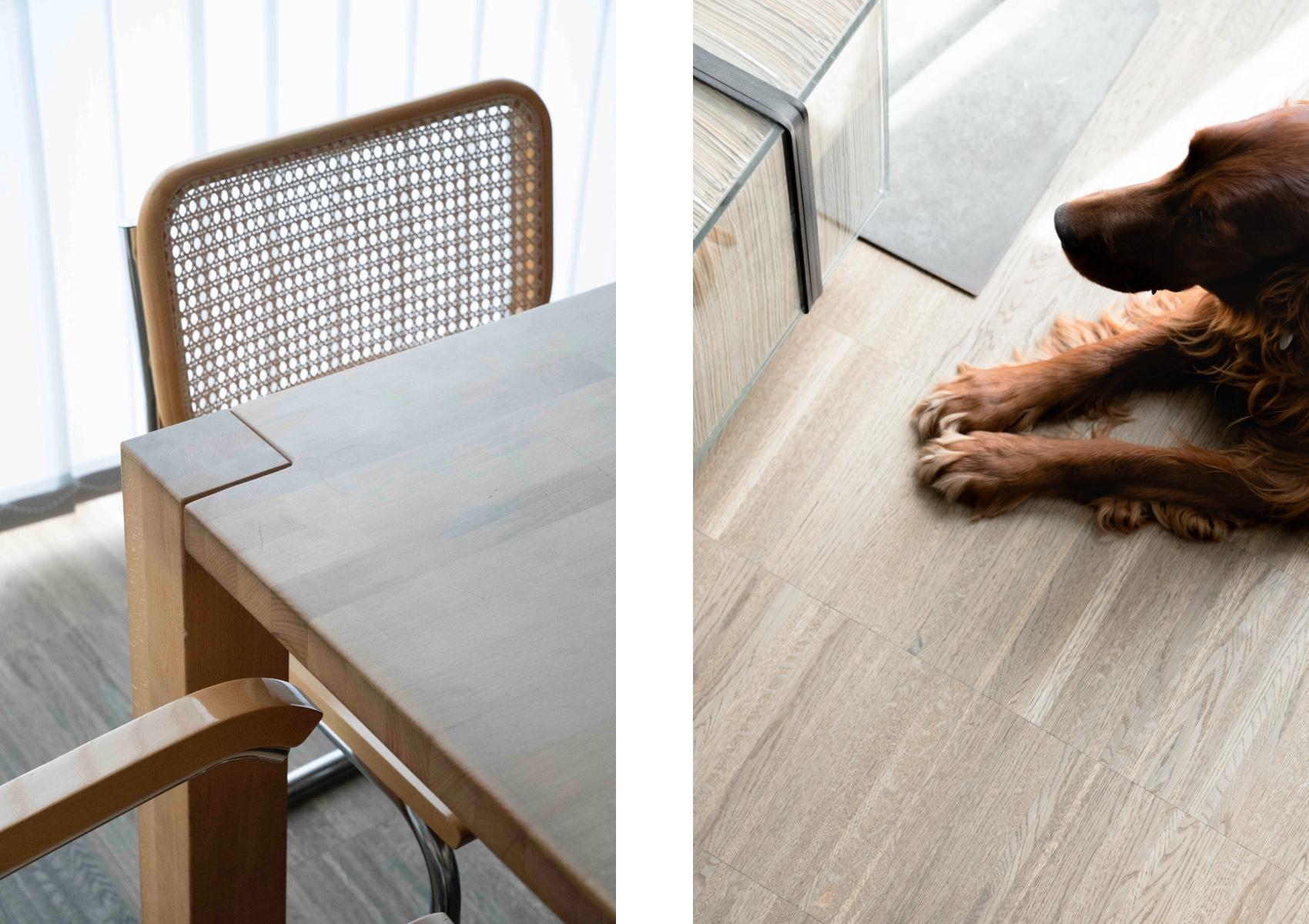 Eck von Besprechungstisch mit Sesseln und Hund am Boden liegend neben Kunstobjektin der in der Anwaltskanzlei Lindner & Rock
